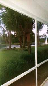 viewfromporch